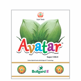 AVATAR  BG II (SUPER-5)