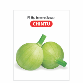CHINTU