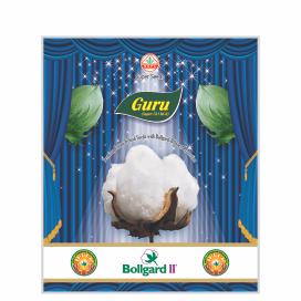 GURU  BG II (SUPER-721)