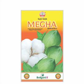 MEGHA  BG II (SUPER-544)