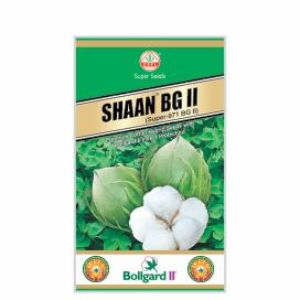 SHAAN  BG II (SUPER-971)