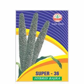 SUPER 36