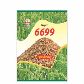 SUPER 6699